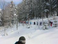 Aktivregion-Golling-schneeschuhwandern