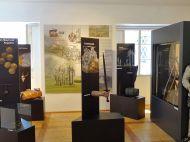 Golling_Burg_Museum