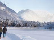 Golling_Bluntautal_Winter