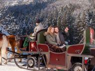 Golling_Winter_Pferdeschlittenfahrt