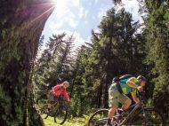 Mountain-Bike-Sonnenschein