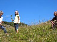 Blumenpfluecken-beim-Wandern