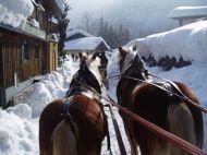 Pferdeschlitten_Bluntau
